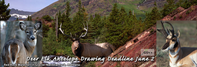 Hunting Banner created for FWP Home Page